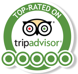 Paragliding Montenegro TOP-RATED on Tripadvisor